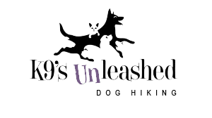 K9s Unleashed